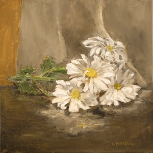 daisies fallen